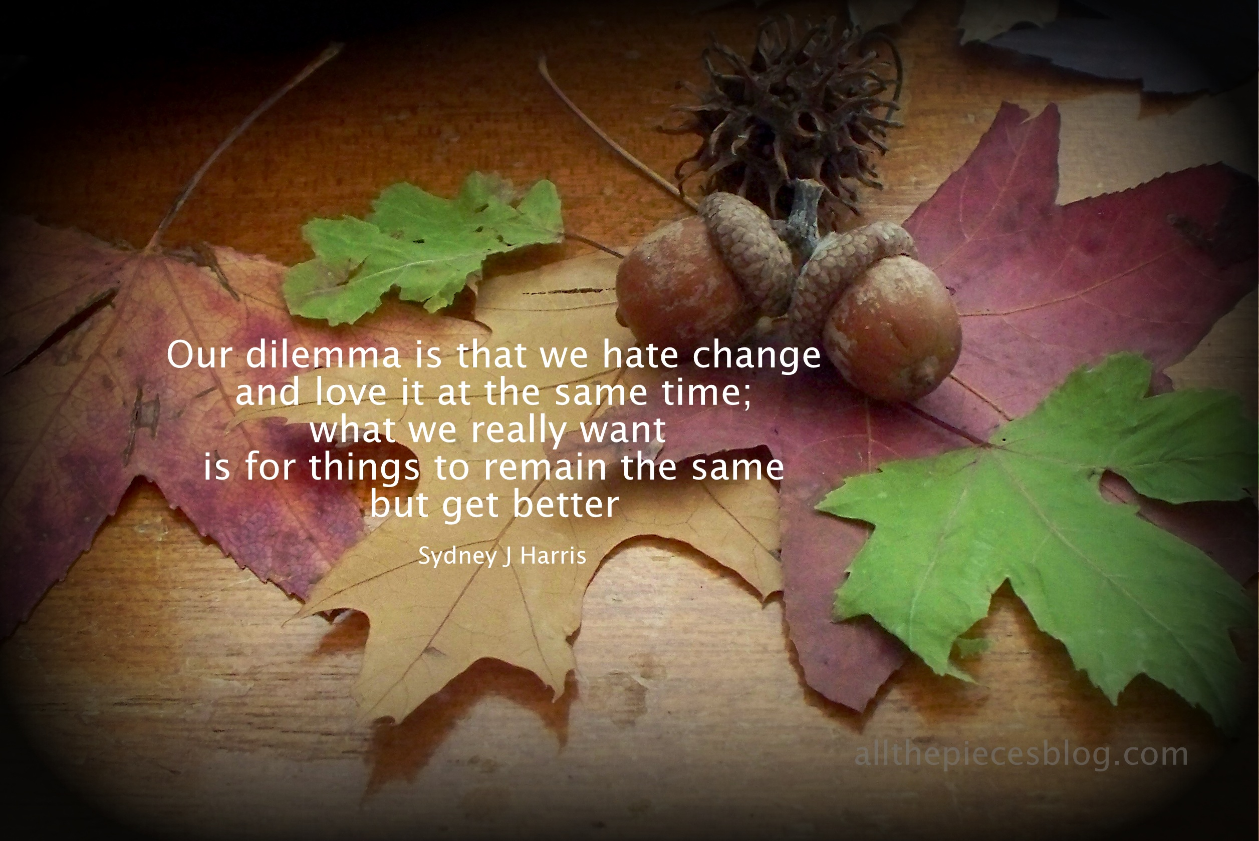 Autumn Thoughts